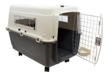 Was ist beim Kauf einer Transportbox für Katzen zu beachten?