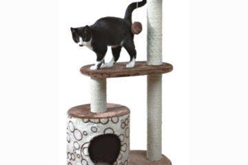 Warum sind Kratzbäume für die Katze so wichtig?