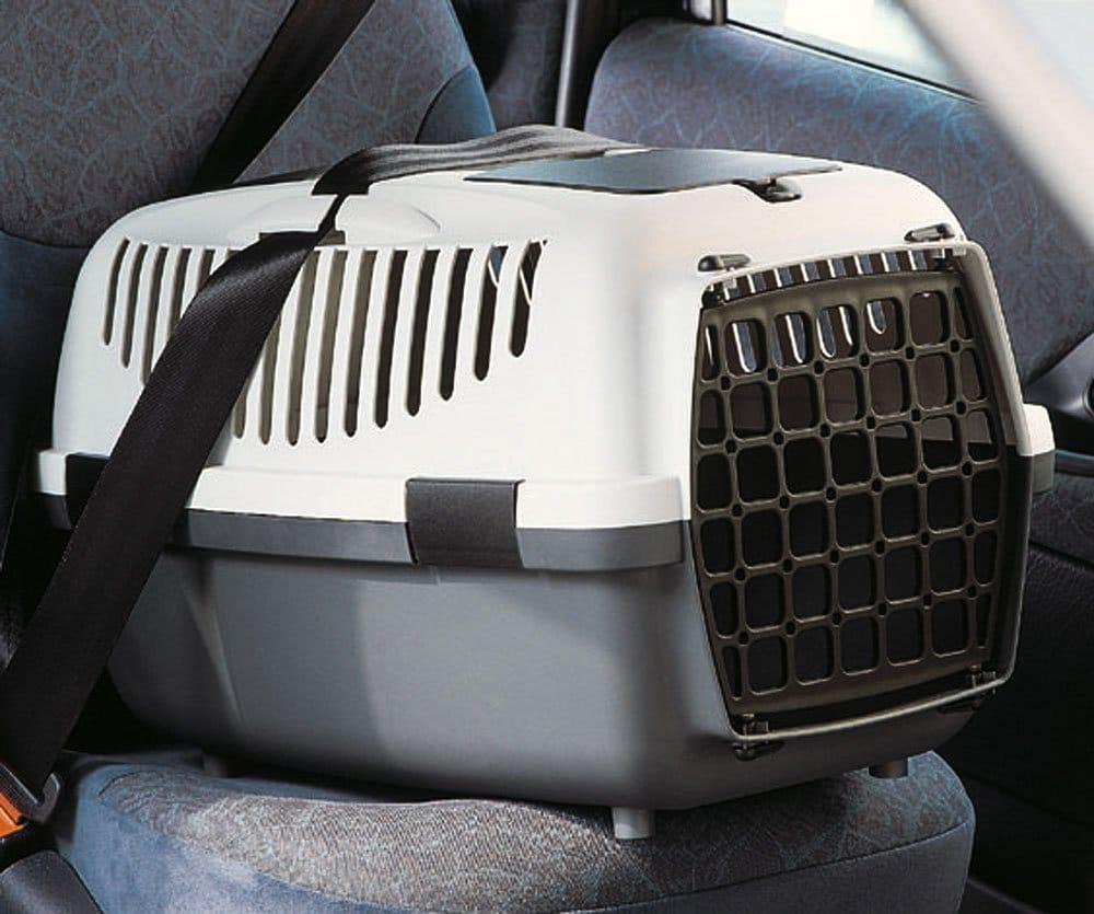 Bequem und sicher im Auto transportieren - Angegurtet für die Sicherheit für Mensch und Tier!