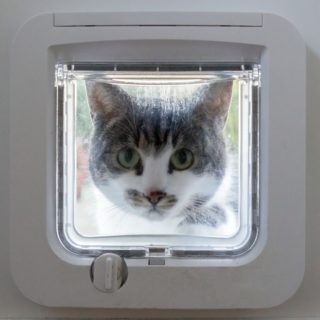 Einfache Katzenklappe - Das Tor zu großen Freiheit