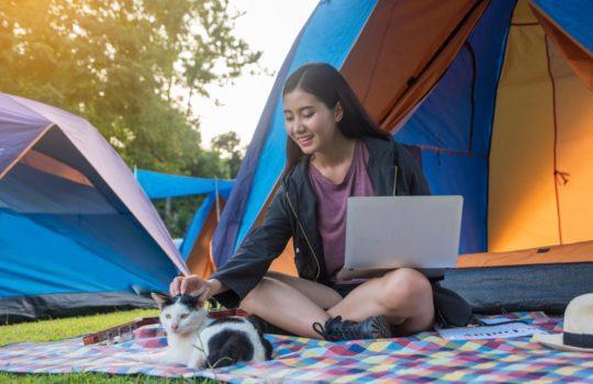 Camping mit der Katze