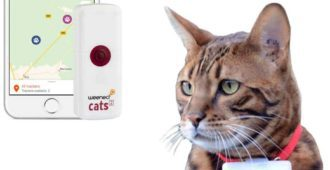 weenect-cats-2-gps-tracker