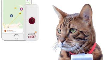 Weenect Cats 2 – Katzenortung per GPS Tracker