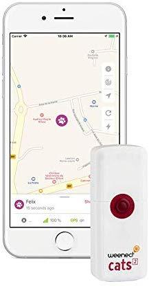 GPS Ortung Katze