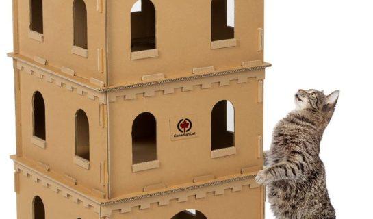 Katzenhäuser aus Pappe