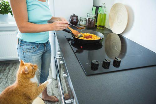 Küchenherd katzensicher machen