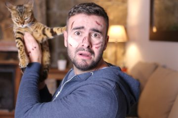 Katzenhaftpflichtversicherung – Wer haftet bei von der Katze verursachten Schäden